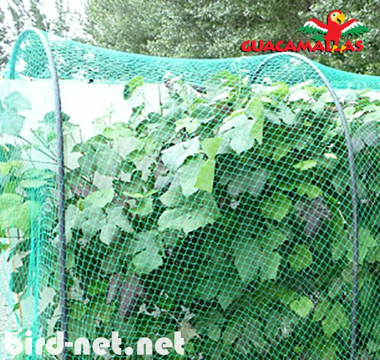 GUACAMALLAS is specially designed to be the most resistant and economical bird barrier.