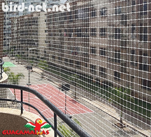 Bird nets used in an apartment complex to keep pigeons and starlings away