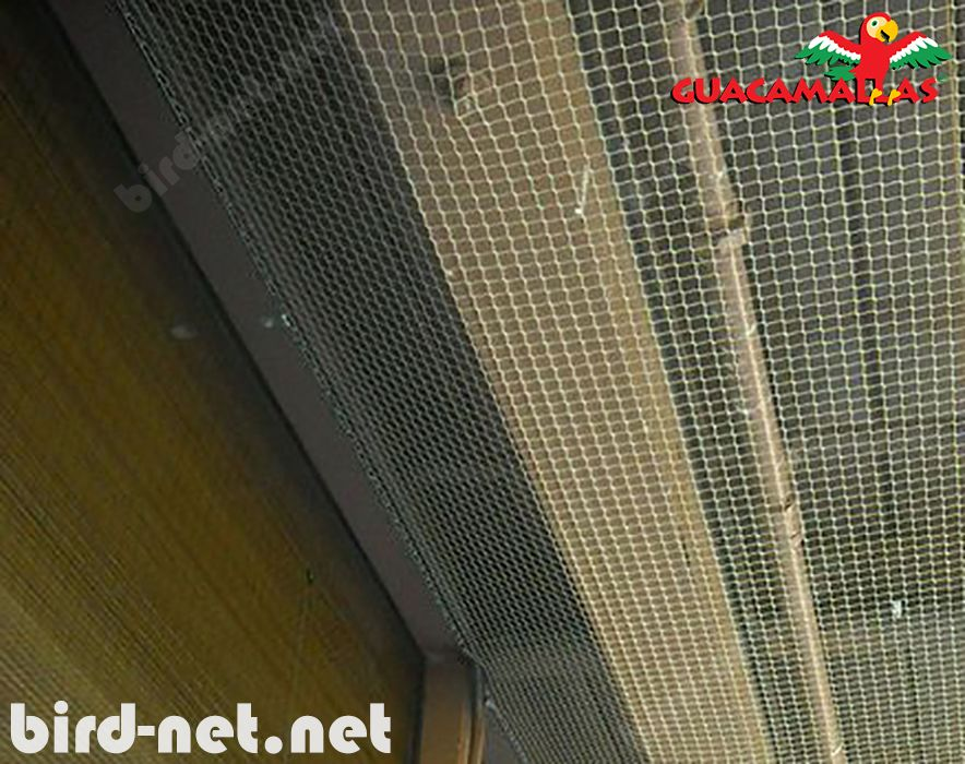 protect your building with bird netting GUACAMAYAS
