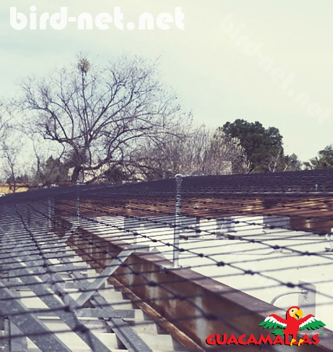 bird barrier nets are very useful in urban and industrial areas as a barrier against these pests