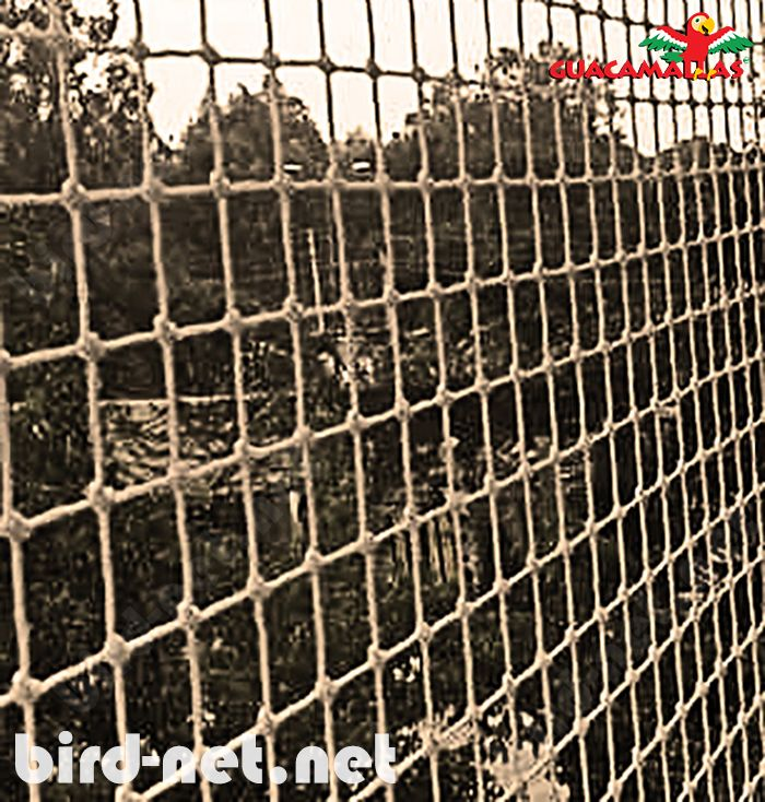 Bird barriers for buildings are one of the most effective ways to protect buildings