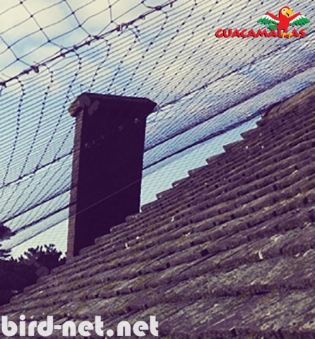 To effectively block the passage ways to our terraces and roof, the only secure product are GUACAMALLAS pigeon control nets.